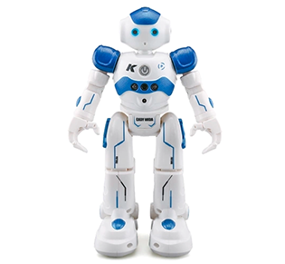 Chinese LEORY RC ROBOT